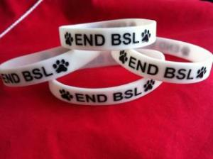 end bsl wristband in support of new hope animal rescue