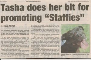 Tasha does her bit for promoting staffies