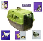 pet carrier options 1 green