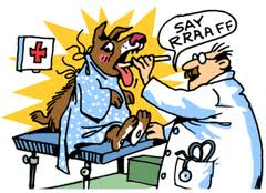 sick dog at the vets cartoon