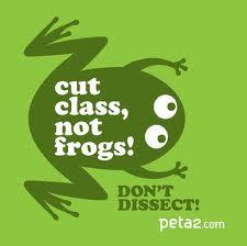 cut glass not frogs