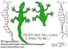 lizard tail shed cartoon