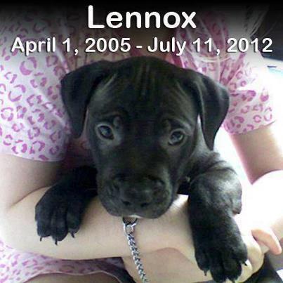 RIP lennox