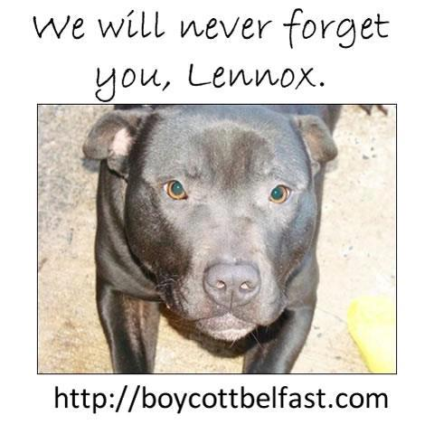 we will never forget you lennox