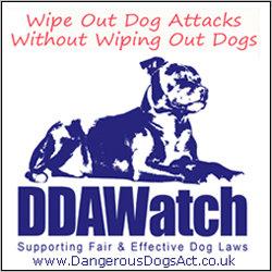 DDA Watch image