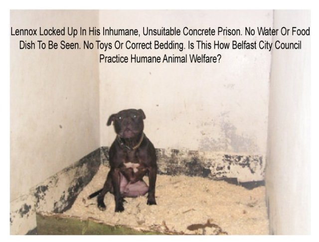 lennox in his prison cell